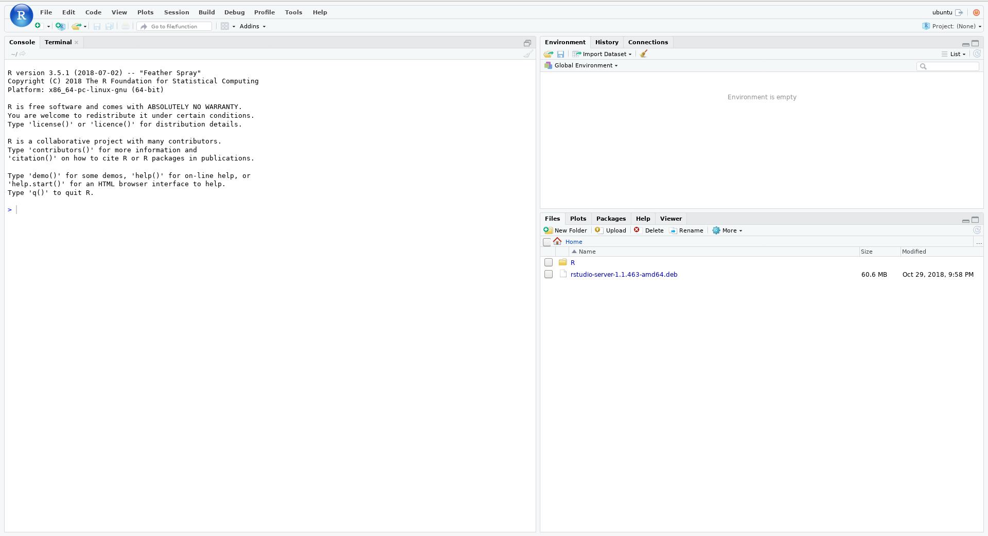 Set up RStudio - de NBI Cloud Wiki